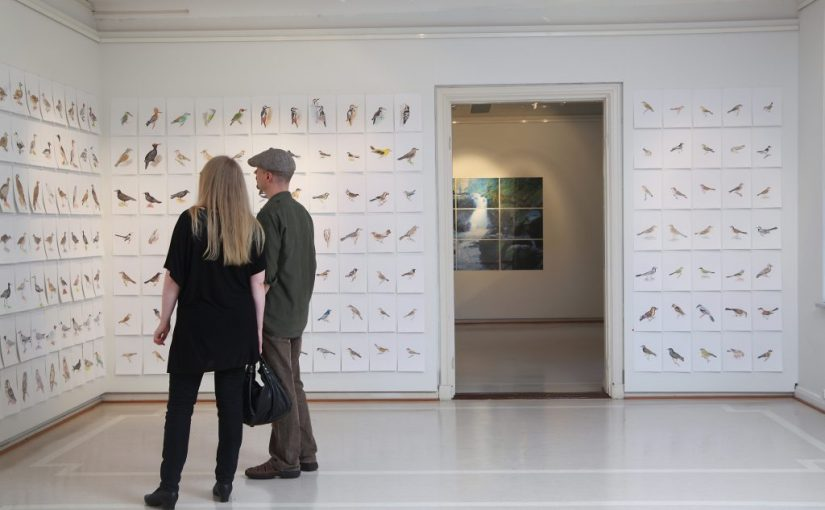 I love animals, Part 1: Nordic birds